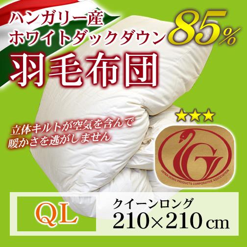 京都西川羽毛&マイクロファイバー2枚合わせ掛布団クイーンロング
