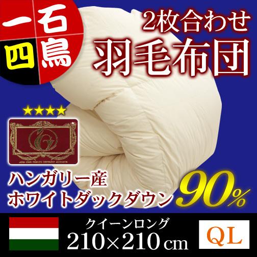 ポーランド産ホワイトマザーグースダウン95%羽毛掛布団クイーンロングキナリ
